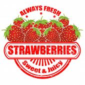 Strawberries Stamp