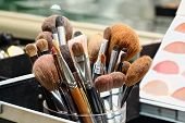Make-up Artist Brushes