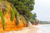 pic of nea  - Mediterranean seacoast in winter - JPG