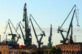 Cranes At Historical Shipyard In Gdansk, Poland poster