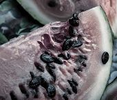 image of rotten  - close up of the rotten watermelon - JPG