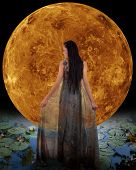 pic of night gown  - Water fairy in front of a Venus - JPG