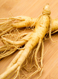 picture of ginseng  - Fresh Ginseng on the wooden background - JPG