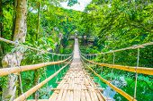 stock photo of pedestrians  - Bamboo pedestrian suspension bridge over river in tropical forest Philippines - JPG