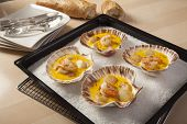 stock photo of scallop-shell  - shrimps and scallops in saffron sauce baked in empty shells on a bed of sea salt - JPG