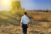 picture of soybeans  - Young businessman with laptop walking on soybean field during harvesting - JPG