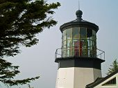 pic of mear  - Cape Meares Lighthouse on the Oregon Coast - JPG