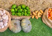 stock photo of sag  - close up shot of garlic and chili and variety of vegetable in basket image - JPG