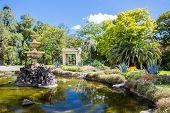 pic of cbd  - Fitzroy Gardens near Melbourne CBD on a hot summer - JPG