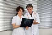 Image of two doctors looking at x-ray .