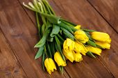 pic of yellow buds  - Big bouquet of beautiful yellow flowers - JPG