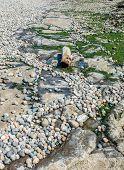 stock photo of tide  - A low tide reveals a rock - JPG