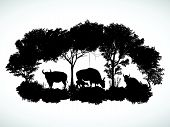 stock photo of oxen  - animal of wildlife is bull or gaur or wild ox  vector design - JPG