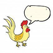 image of cockerels  - cartoon cockerel with speech bubble - JPG