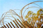 foto of barbed wire fence  - Security with a barbed wire fence with blue sky - JPG