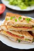 foto of tomato sandwich  - Cheese sandwich with tomato and green lettuce - JPG