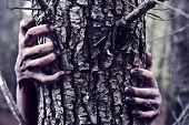 closeup of the bloody and scary hands of a zombie or monster who is hiding behind a tree in the fore poster