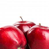 Постер, плакат: красные яблоки изолированные на белом