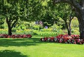 stock photo of manicured lawn  - Beautifully manicured park garden in summer - JPG