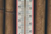 Closeup Of Household Alcohol Thermometer Showing Temperature In Degrees Celsius And Degrees Fahrenhe poster