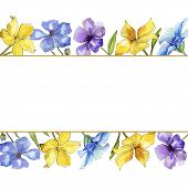 Watercolor Colorful Flax Flowers. Floral Botanical Flower. Frame Border Ornament Square. Aquarelle W poster