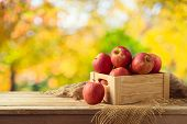 Red Apples In Wooden Box On Table. Autumn And Fall Harvest Background poster