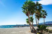 Palm Trees On Sandy Beach Seafront Of Mediterranean City poster