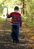 Boy With Stick On Wooded Path poster