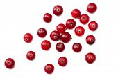 Cranberry Isolated On White. With Clipping Path. Full Depth Of Field. Top View poster