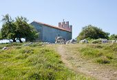 stock photo of headstrong  - View of the Gray Donkey next to the church - JPG