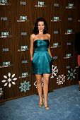 PASADENA - JAN 11: Annie Wersching arrives at the Fox 2010 Winter All-Star Party held at Villa Soris