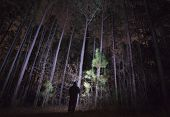Shadowy Figure In A Forest At Night poster