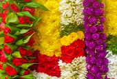 Garland Of Flowers used for religious festival in Hindu tradition