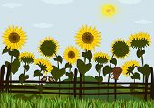 stock photo of bird fence  - Rural landscape of fence with jug and sunflowers - JPG