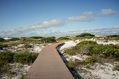 stock photo of gulf mexico  - Boardwalk at Pensacola Florida beach leads through the sand dunes to the Gulf of Mexico - JPG