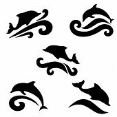 picture of porpoise  - Emblem of a dolphin over the sea on a light background - JPG