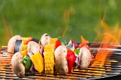 picture of braai  - Delicious grilled vegetarian skewers on burning coals - JPG