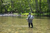 stock photo of fishermen  - Fisherman catches of salmon fly fishing in the river in may - JPG