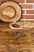 picture of lasso  - American West still life with old horseshoe - JPG