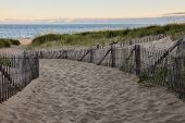 image of cod  - Wooden fence with Atlantic ocean early morning near Provincetown in Cape Cod  - JPG