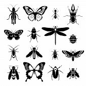 stock photo of ladybug  - Insects black and white decorative icons set with grasshopper bug ladybug isolated vector illustration - JPG