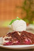 picture of ice-cake  - A slice of chocolate cake with ice cream - JPG