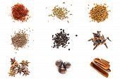 image of fenugreek  - Set of different spices - JPG