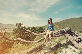 foto of juniper-tree  - Beautiful traveler young woman resting on juniper tree in the mountains in summer - JPG
