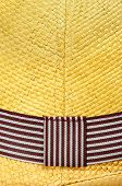closeup of a straw Panama hat