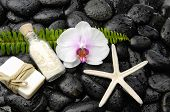 Wet black stones background with white orchid, soap,starfish, ,fern on wet background  poster