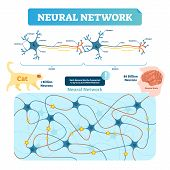 Neural Network Vector Illustration. Neuron Structure And Net Diagram. Synapse, Soma, Axon And Dendri poster