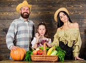 Parents And Daughter Celebrate Harvest Holiday Pumpkin Vegetables Basket. Family Rustic Style Farmer poster