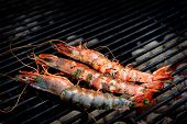 stock photo of norway lobster  - Norway lobster - JPG