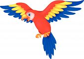 image of animated cartoon  - Vector illustration of Cute parrot bird cartoon - JPG